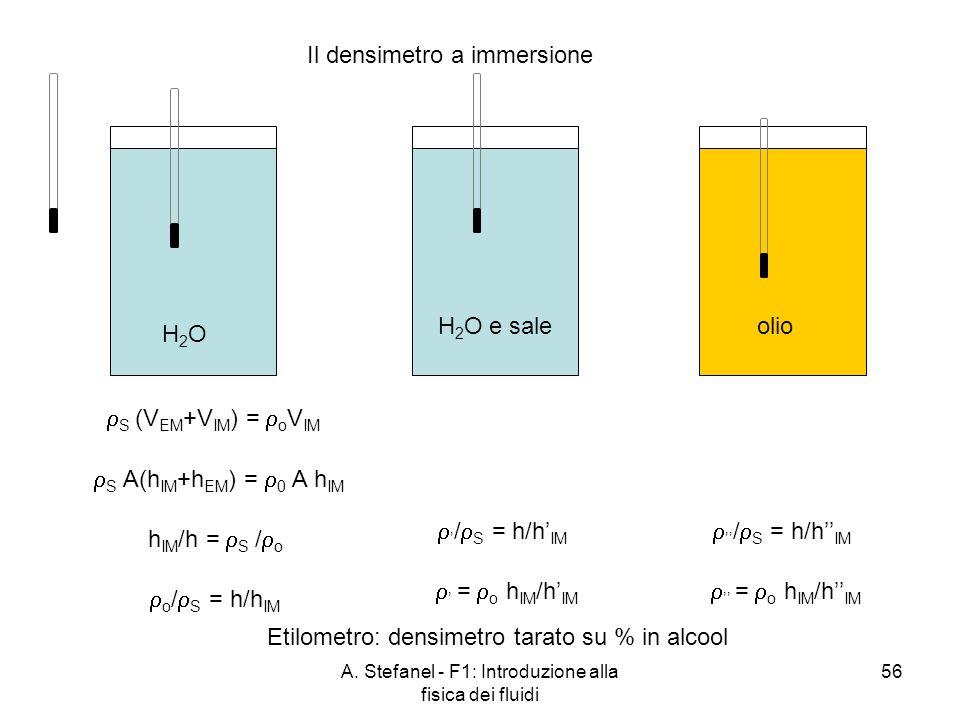 Il densimetro a immersione