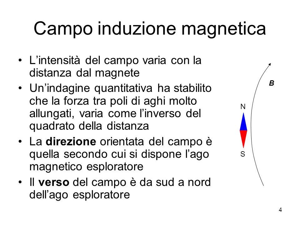 Campo induzione magnetica