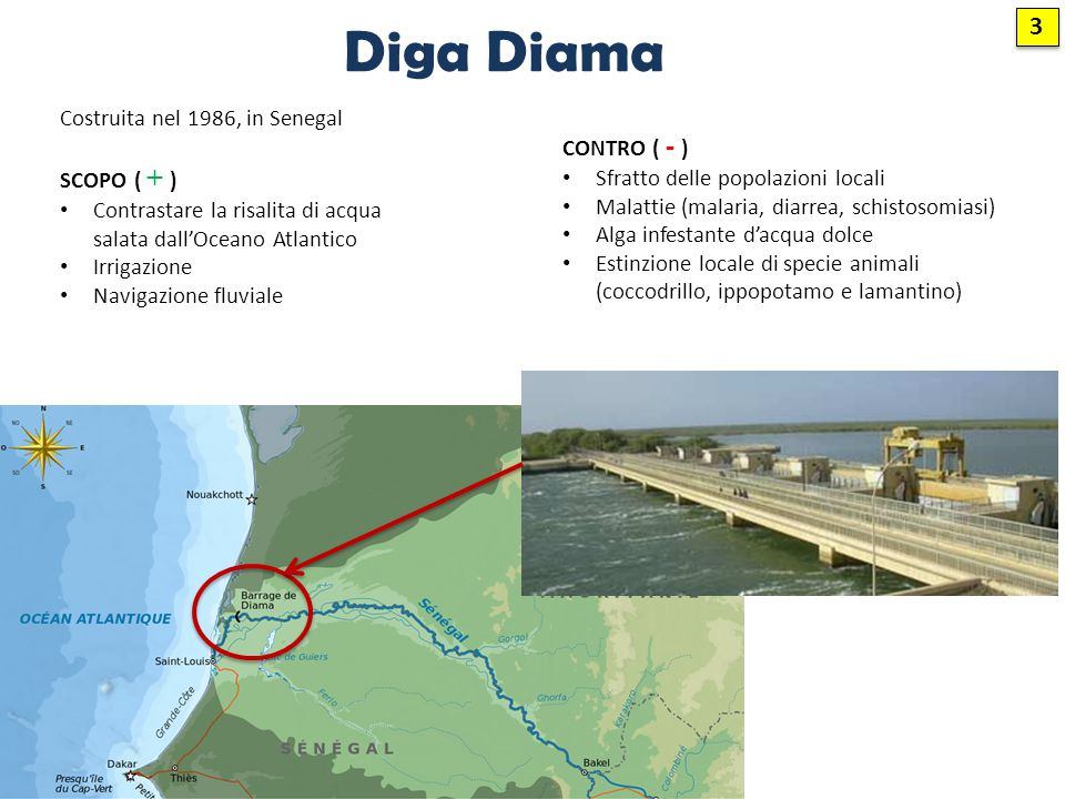 Diga Diama 3 Costruita nel 1986, in Senegal CONTRO ( - ) SCOPO ( + )