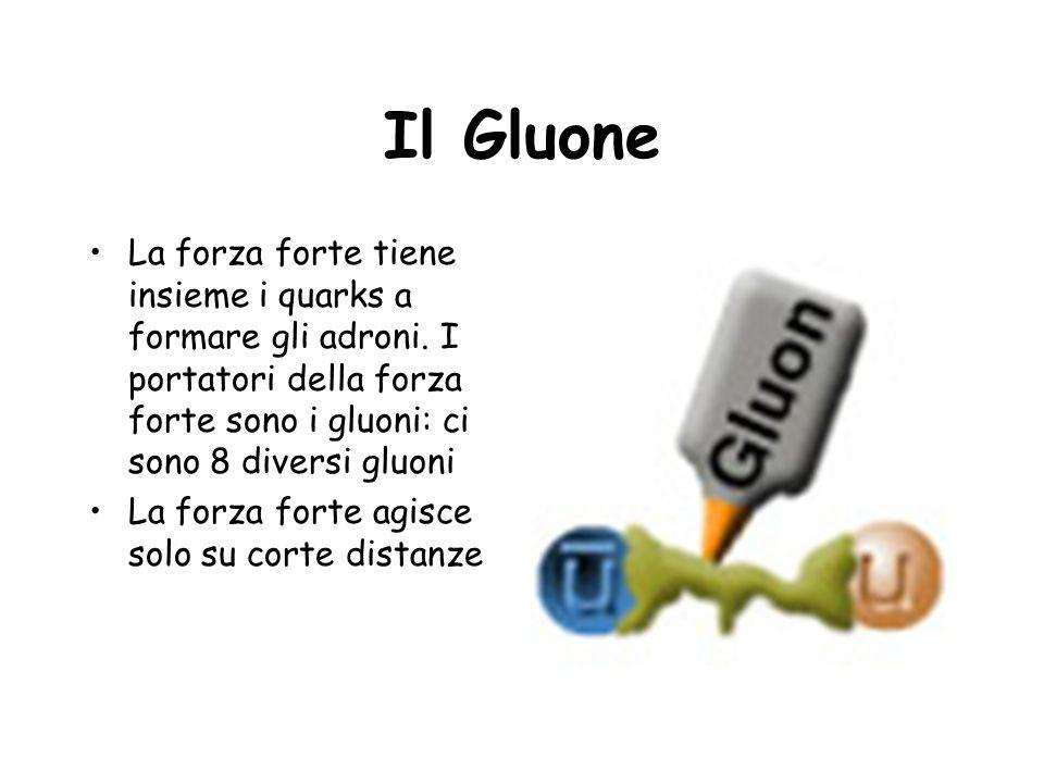 Il Gluone La forza forte tiene insieme i quarks a formare gli adroni. I portatori della forza forte sono i gluoni: ci sono 8 diversi gluoni.