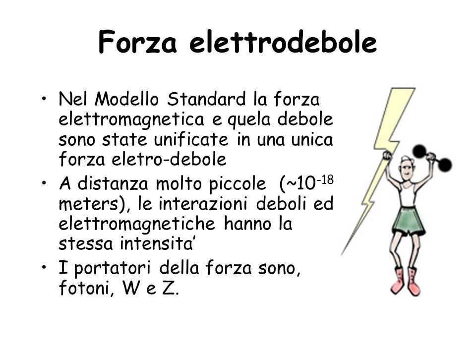 Forza elettrodebole Nel Modello Standard la forza elettromagnetica e quela debole sono state unificate in una unica forza eletro-debole.