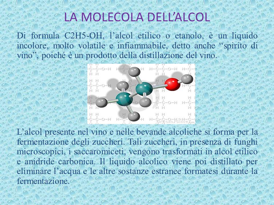 LA MOLECOLA DELL'ALCOL