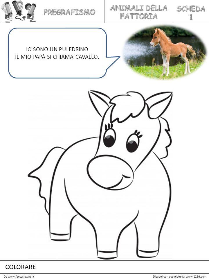 ANIMALI DELLA FATTORIA SCHEDA 1 PREGRAFISMO