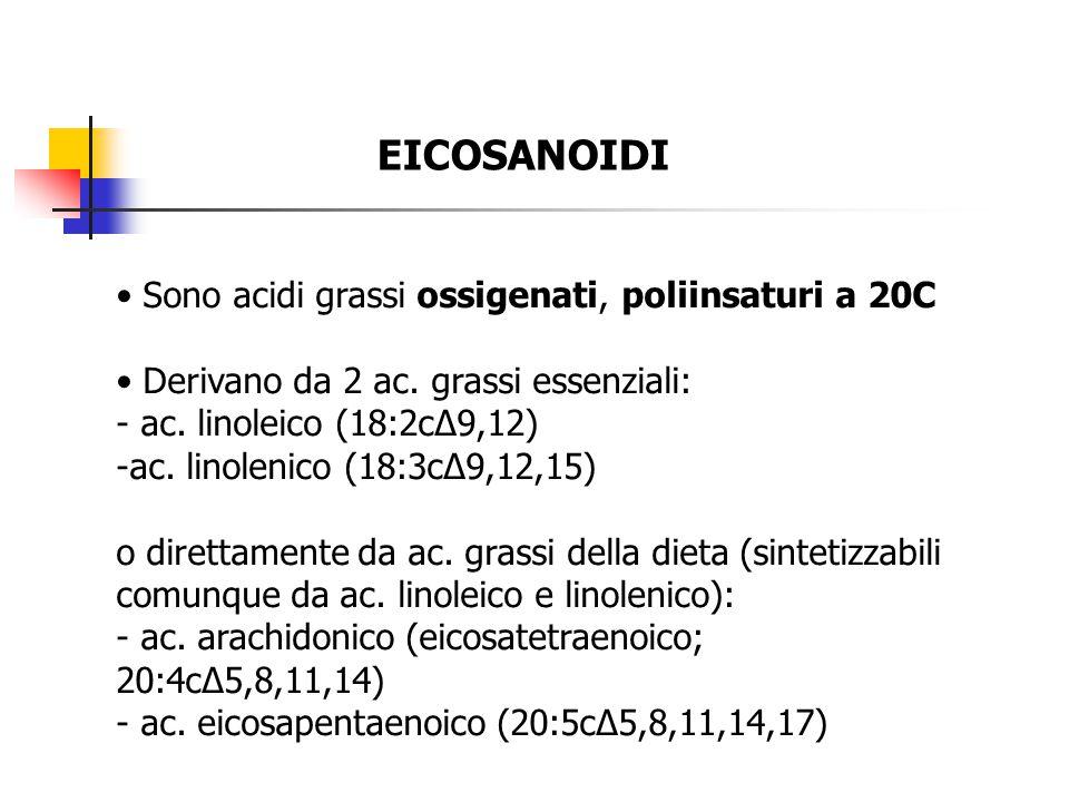 EICOSANOIDI • Sono acidi grassi ossigenati, poliinsaturi a 20C