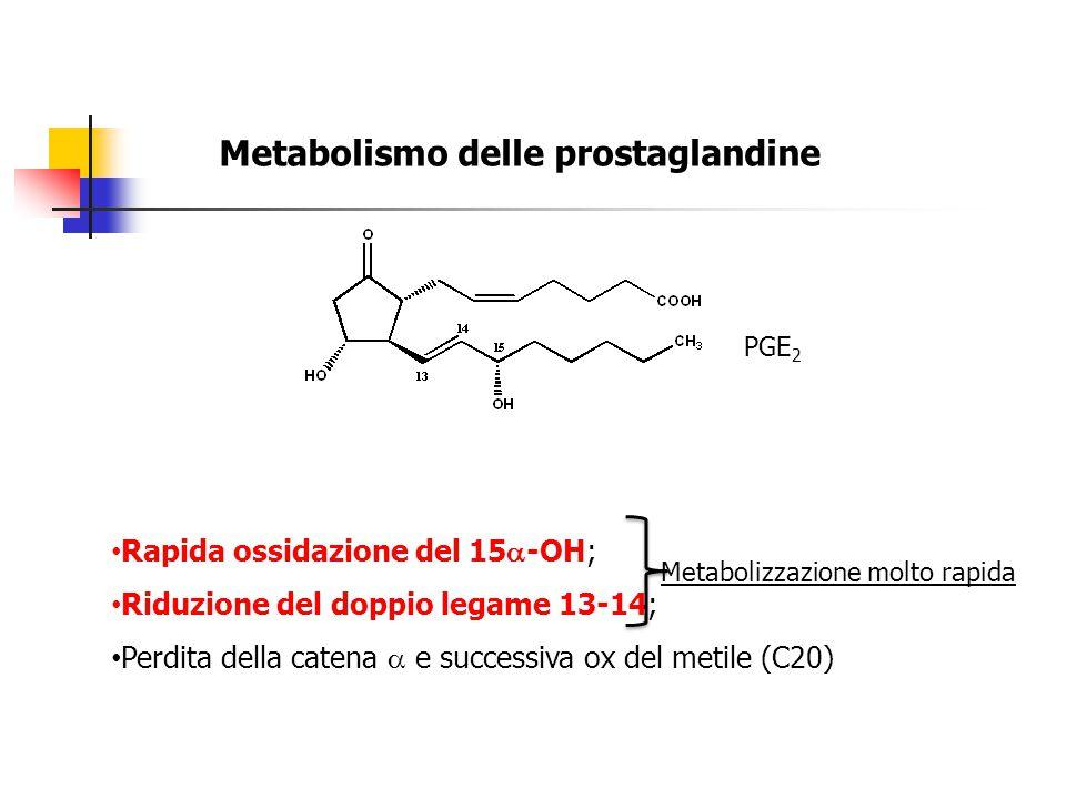 Metabolismo delle prostaglandine