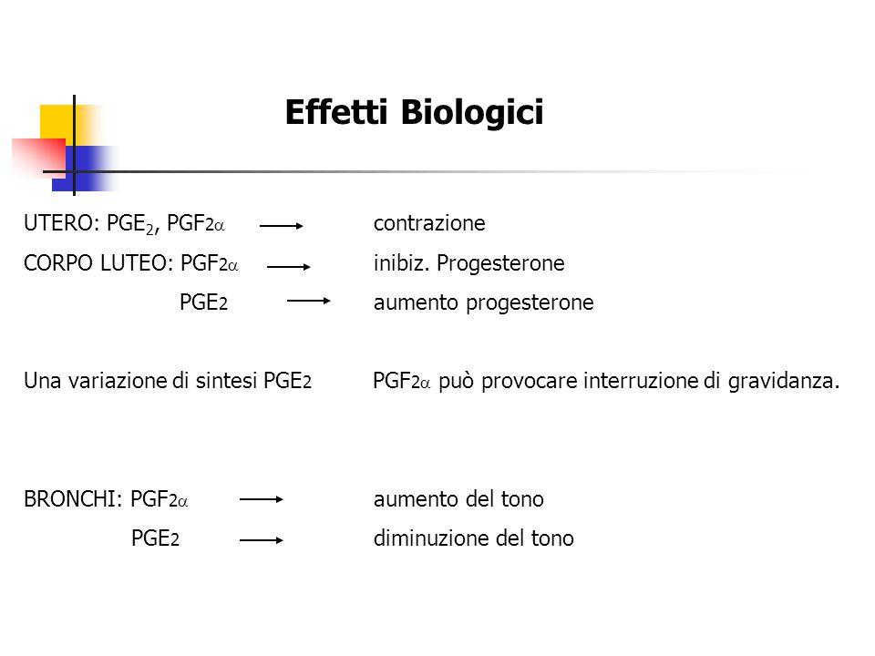 Effetti Biologici UTERO: PGE2, PGF2a contrazione