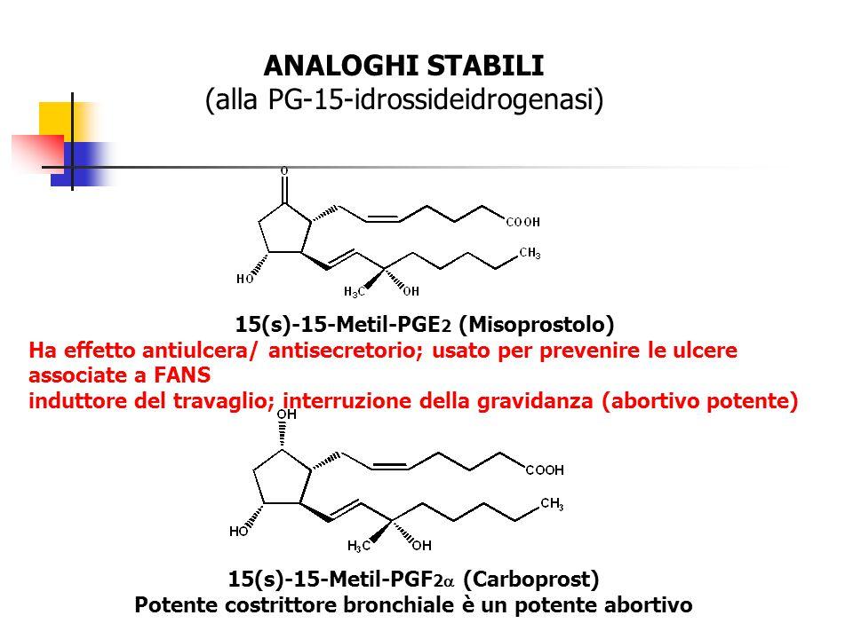 (alla PG-15-idrossideidrogenasi)