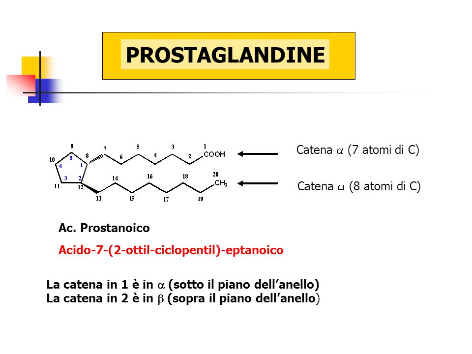 PROSTAGLANDINE Catena a (7 atomi di C) Catena  (8 atomi di C)