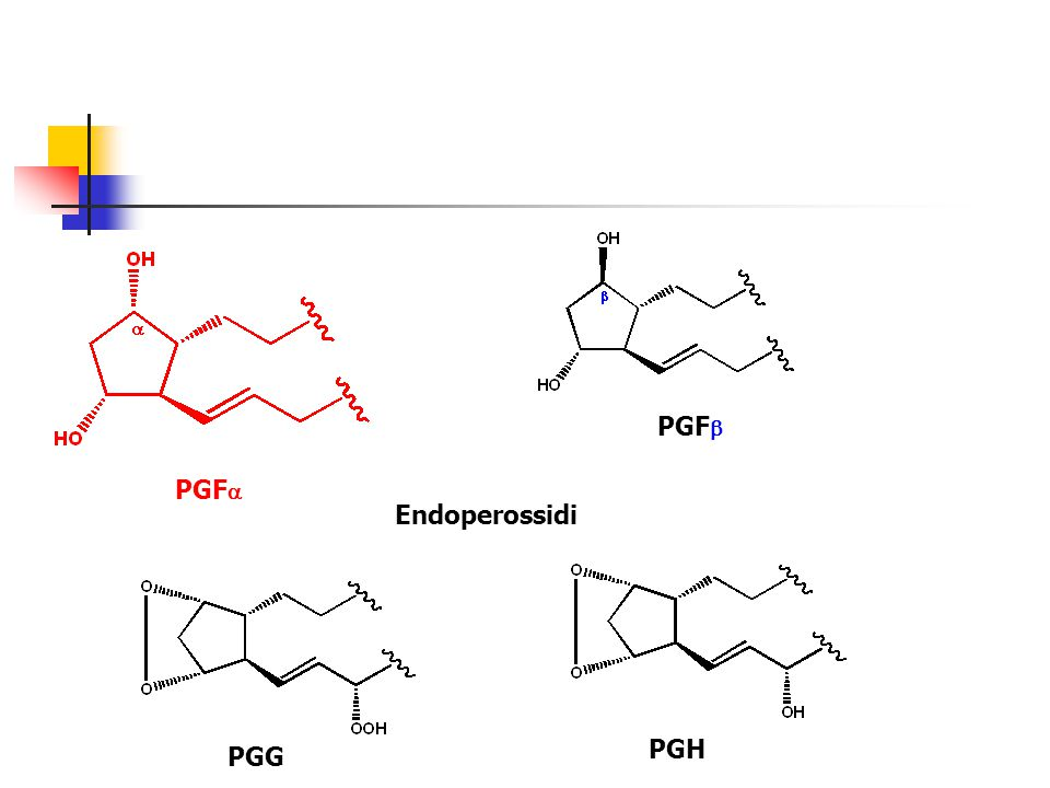 PGFb PGFa Endoperossidi PGH PGG