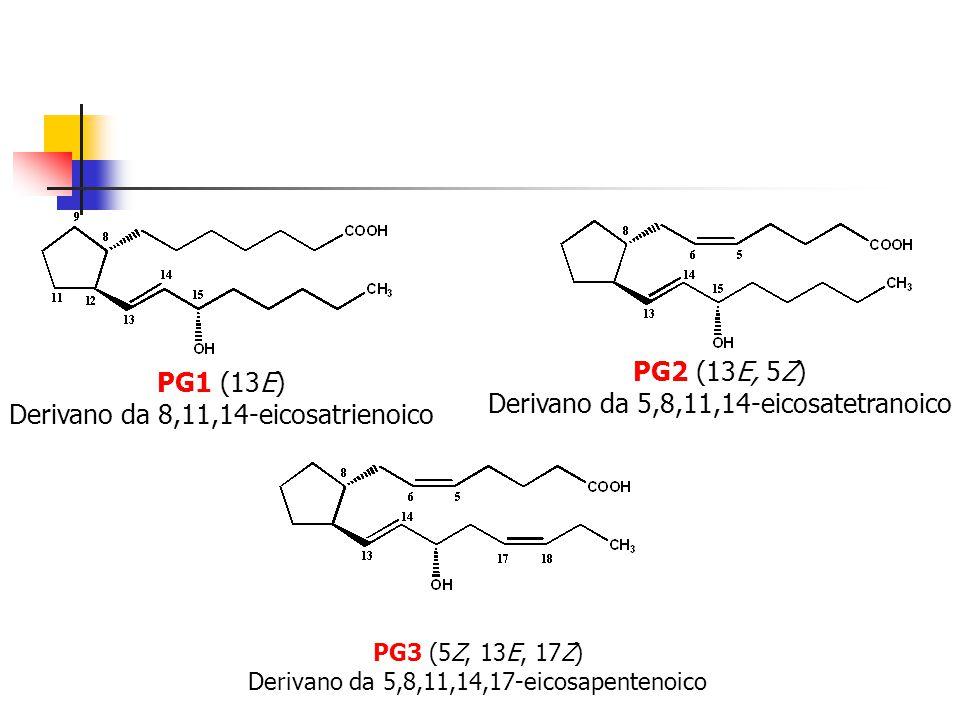 Derivano da 5,8,11,14-eicosatetranoico PG1 (13E)