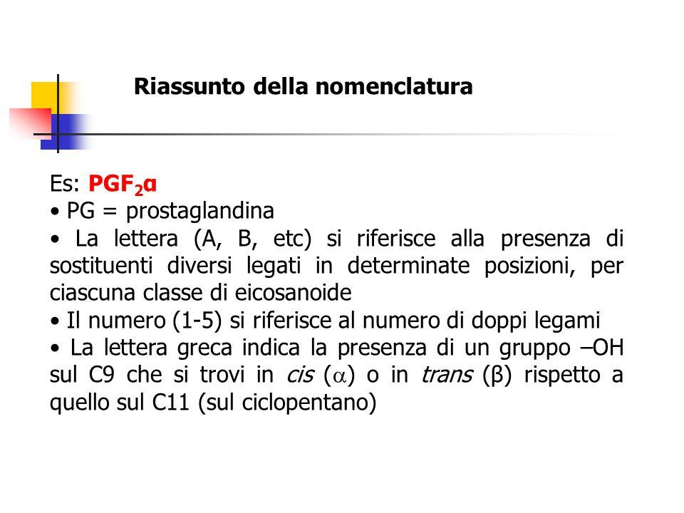 Riassunto della nomenclatura