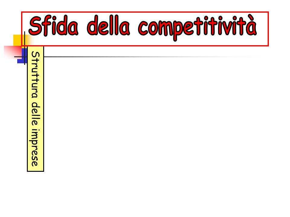 Sfida della competitività