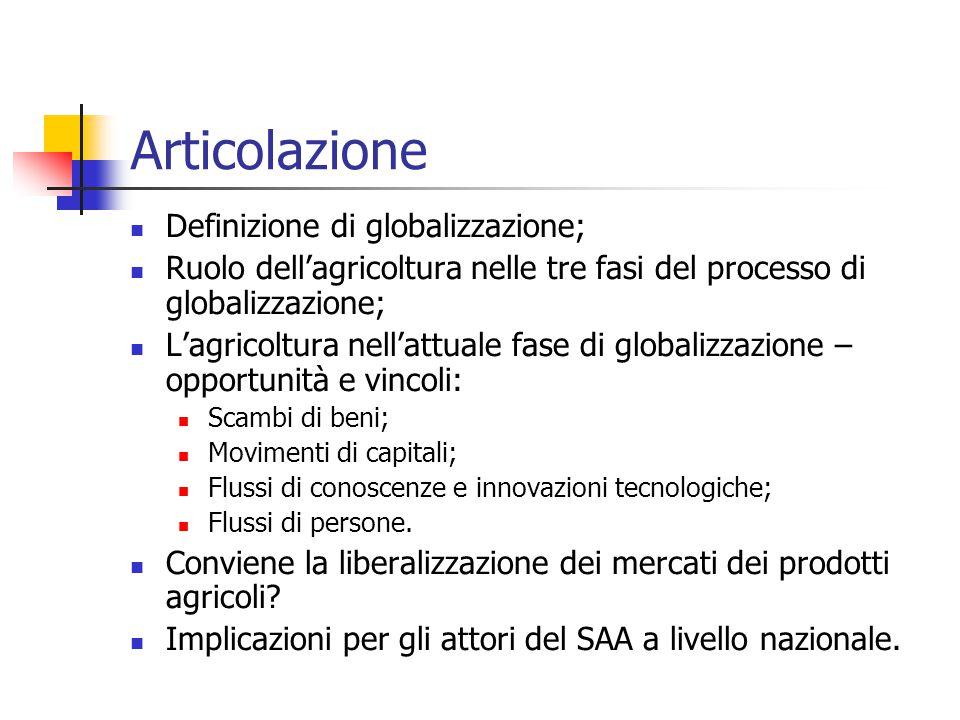 Articolazione Definizione di globalizzazione;