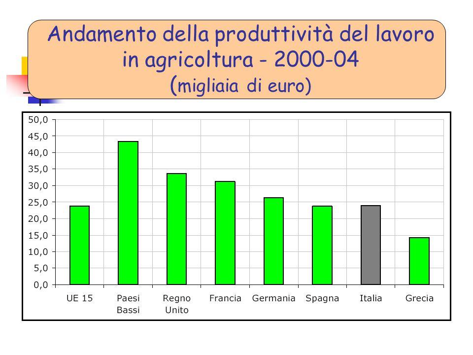 Andamento della produttività del lavoro in agricoltura - 2000-04 (migliaia di euro)