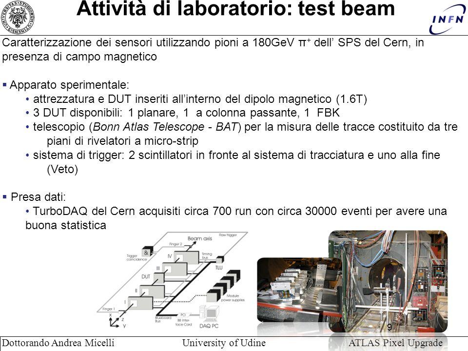 Attività di laboratorio: test beam