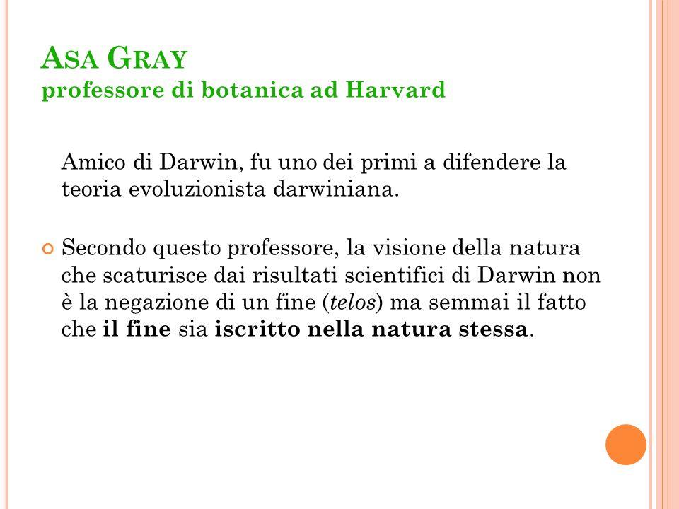 Asa Gray professore di botanica ad Harvard