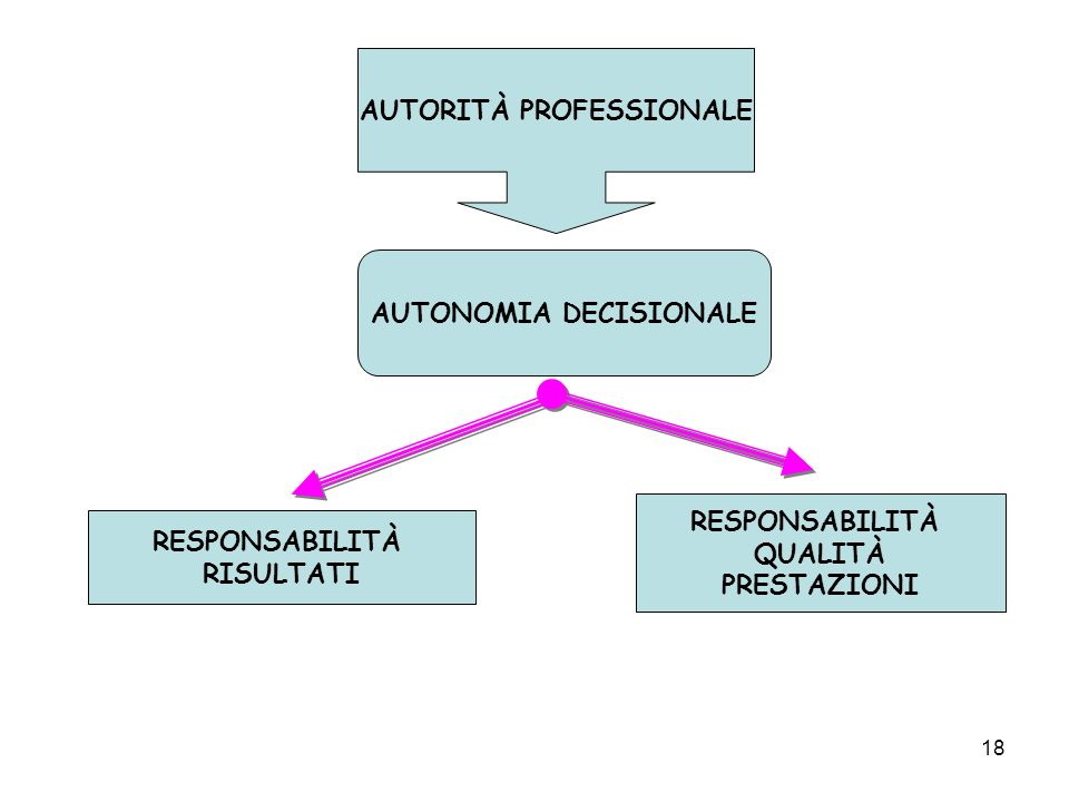 AUTORITÀ PROFESSIONALE AUTONOMIA DECISIONALE