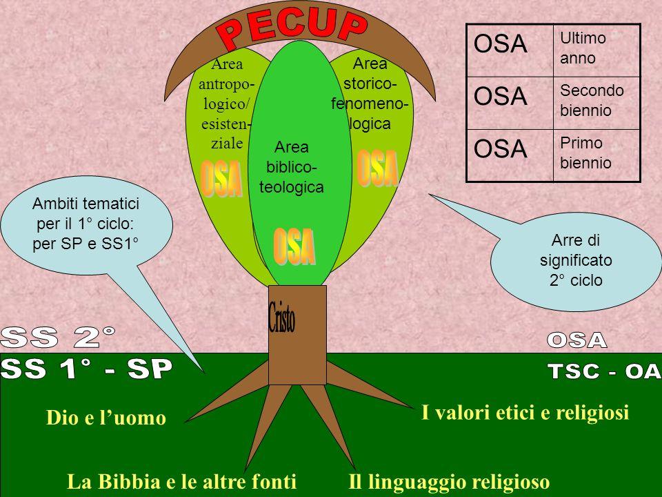 PECUP OSA OSA OSA Cristo SS 2° OSA SS 1° - SP TSC - OA OSA