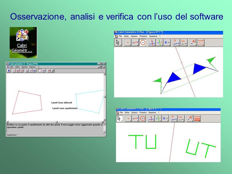 Osservazione, analisi e verifica con l'uso del software