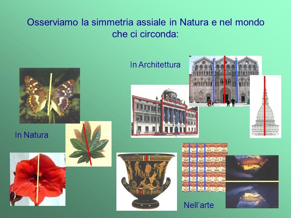 Osserviamo la simmetria assiale in Natura e nel mondo che ci circonda:
