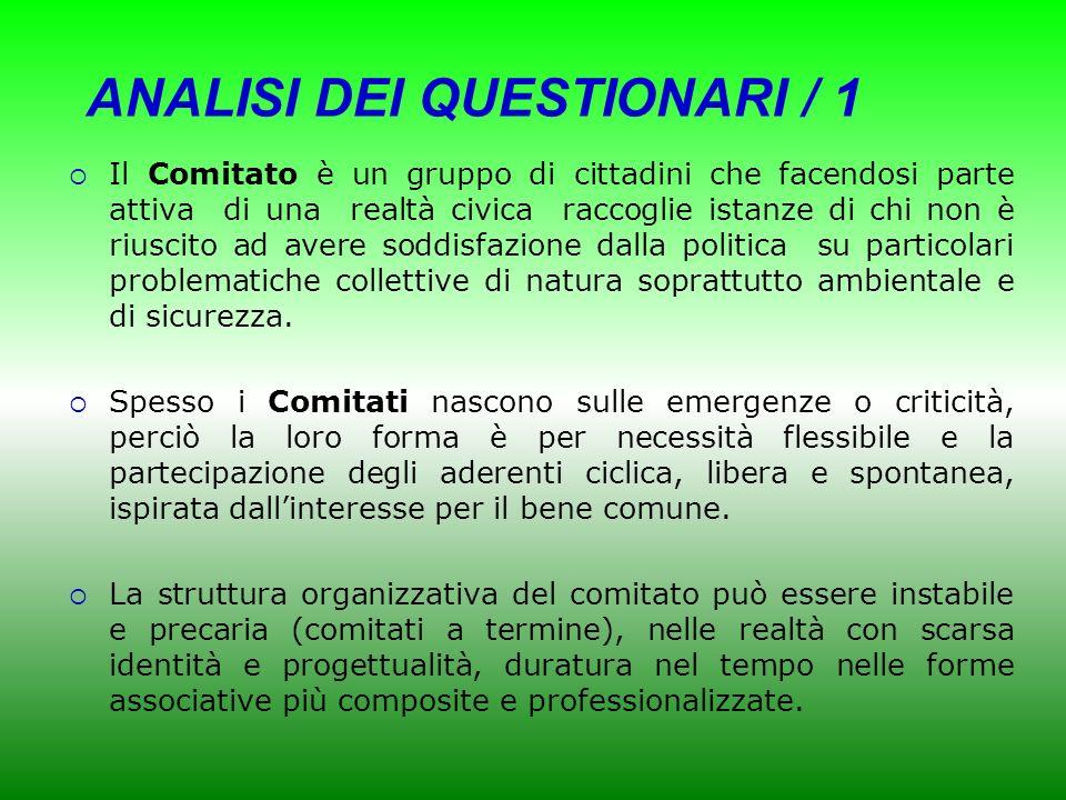 ANALISI DEI QUESTIONARI / 1