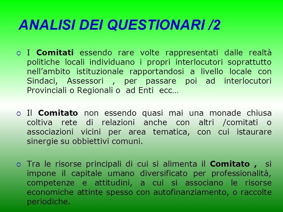 ANALISI DEI QUESTIONARI /2
