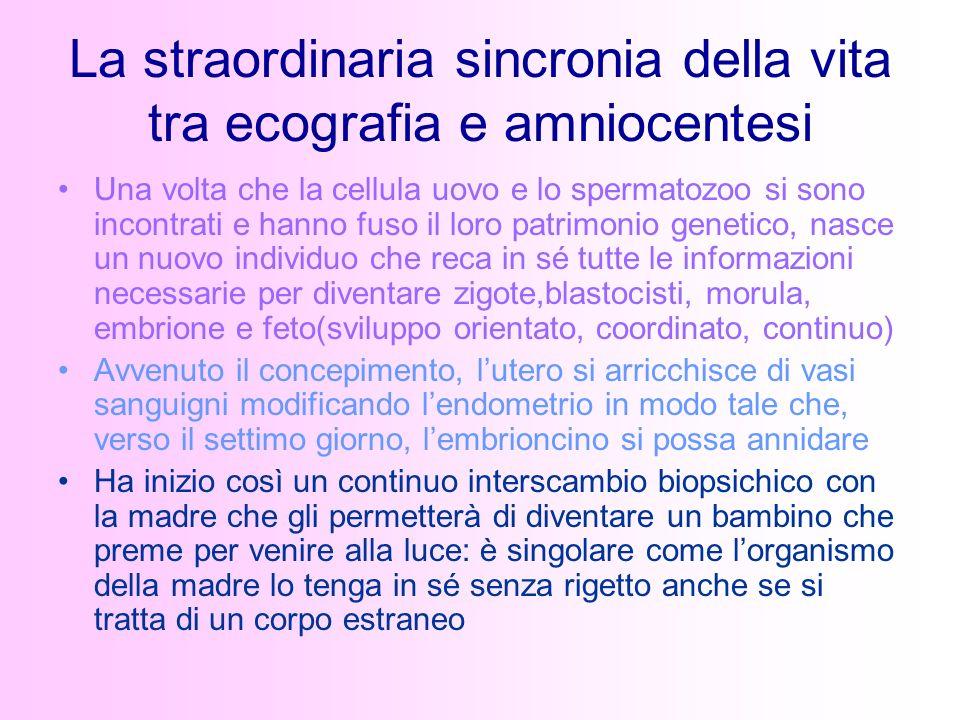 La straordinaria sincronia della vita tra ecografia e amniocentesi