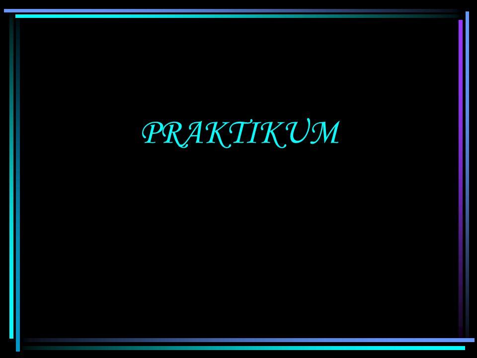 PRAKTIKUM