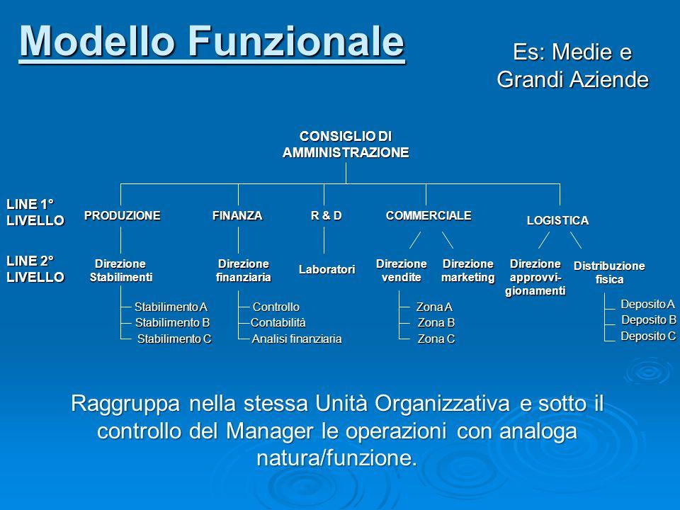 Modello Funzionale Es: Medie e Grandi Aziende