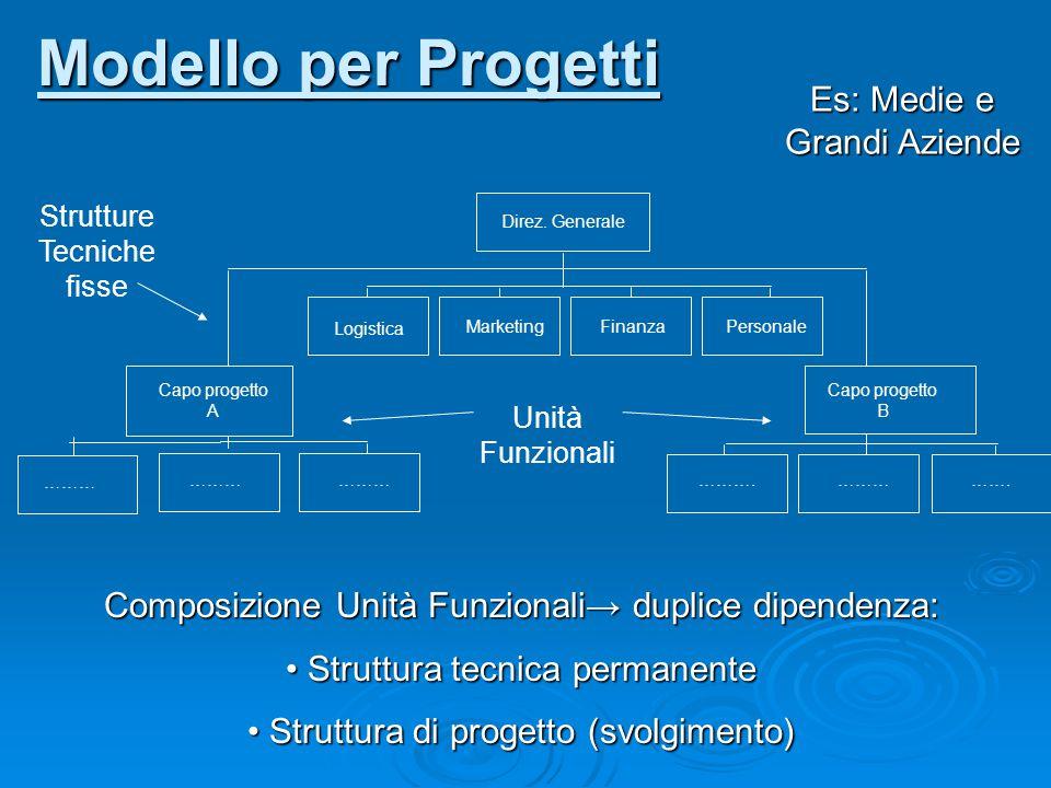 Modello per Progetti Es: Medie e Grandi Aziende