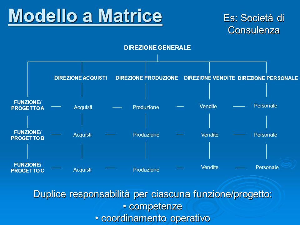 Modello a Matrice Es: Società di Consulenza