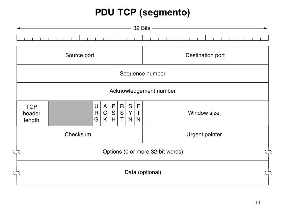 PDU TCP (segmento)