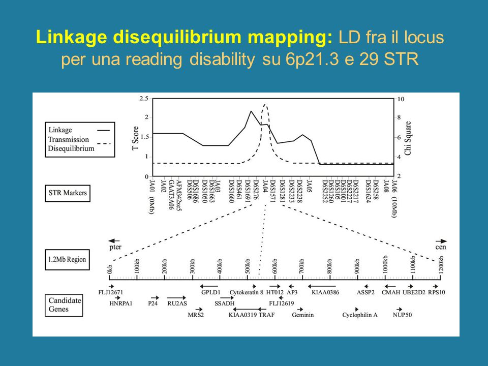 Linkage disequilibrium mapping: LD fra il locus per una reading disability su 6p21.3 e 29 STR