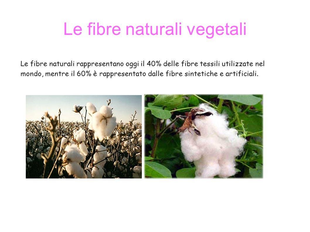 Le fibre naturali vegetali