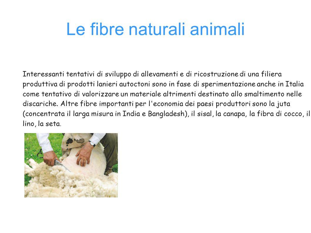 Le fibre naturali animali