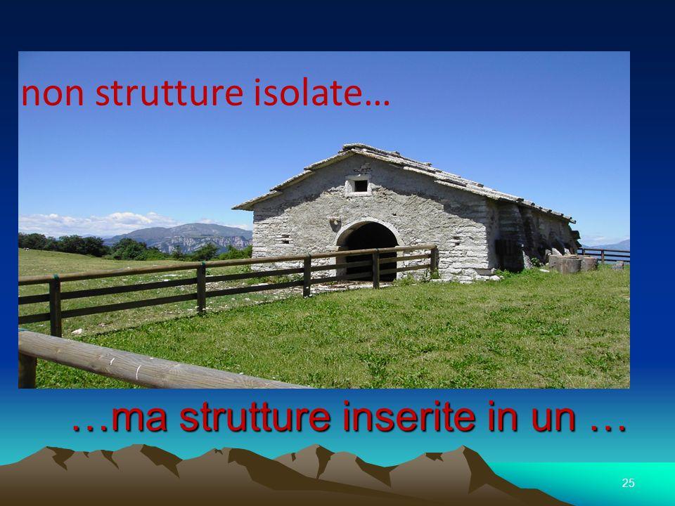 …ma strutture inserite in un …