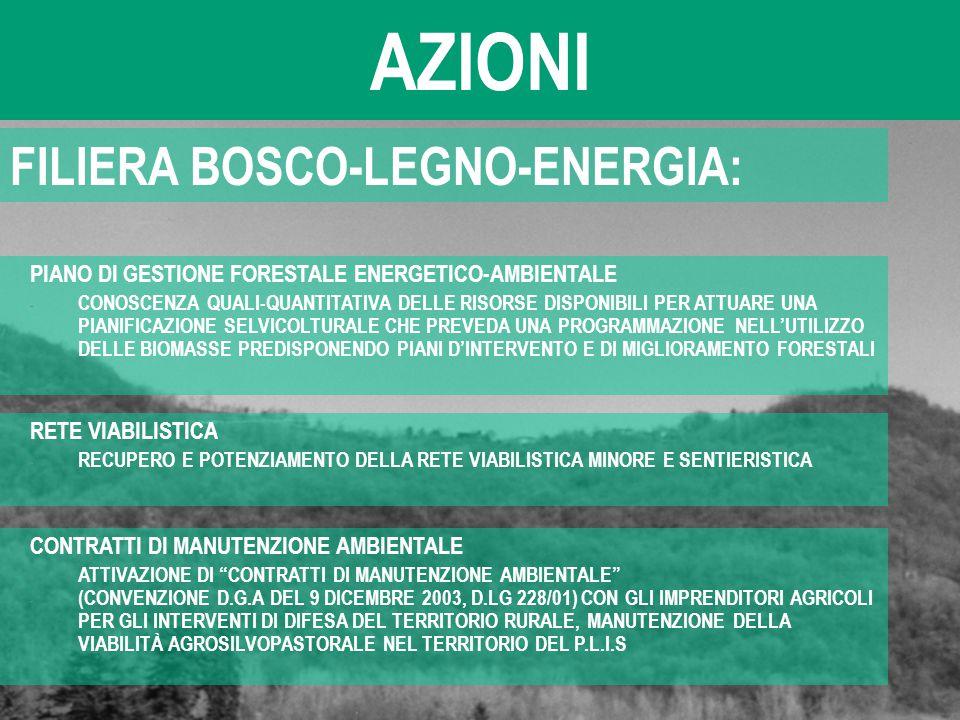 AZIONI FILIERA BOSCO-LEGNO-ENERGIA: