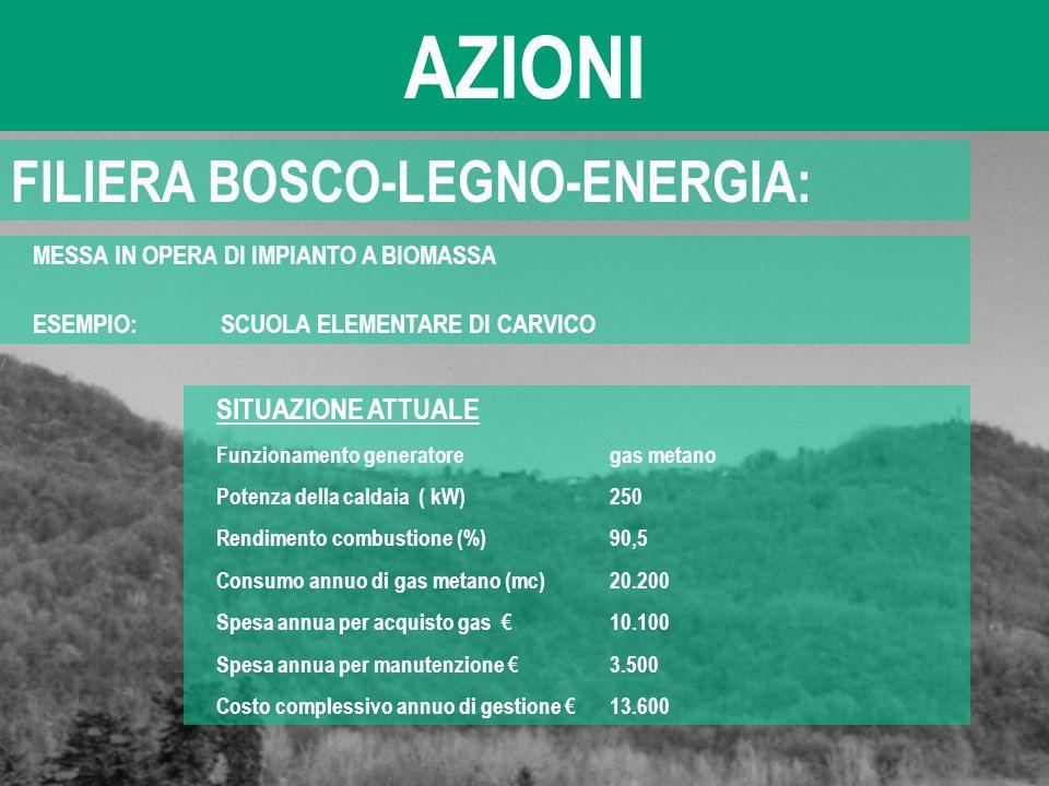 AZIONI FILIERA BOSCO-LEGNO-ENERGIA: SITUAZIONE ATTUALE