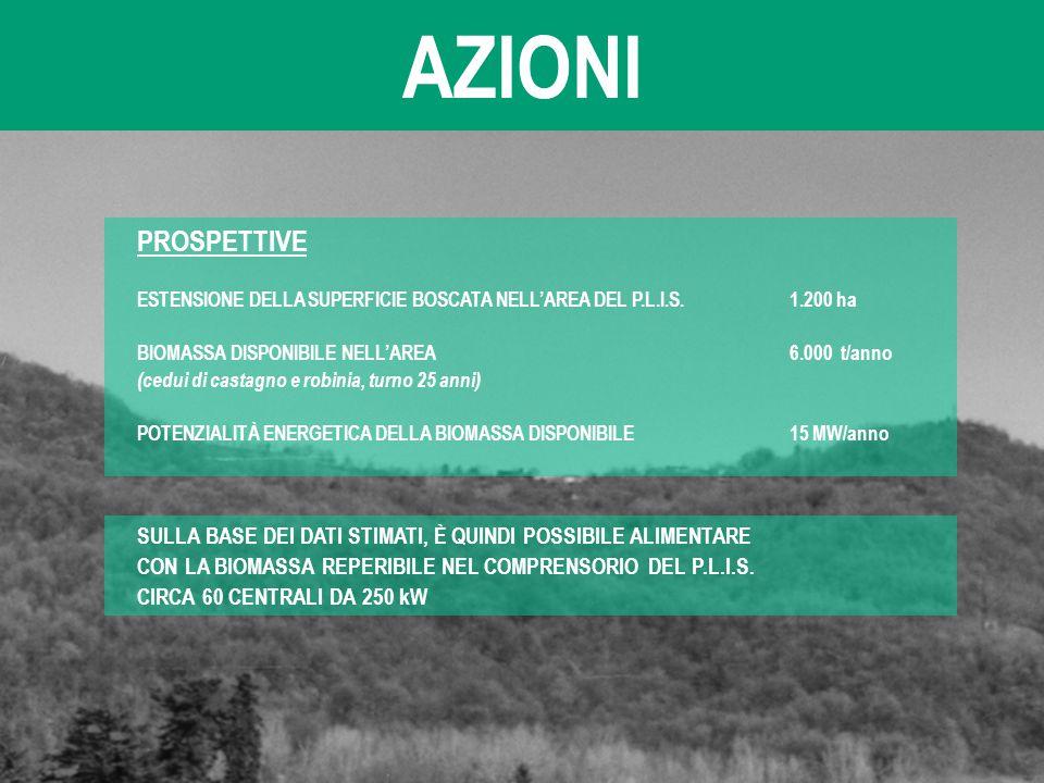 AZIONI PROSPETTIVE. ESTENSIONE DELLA SUPERFICIE BOSCATA NELL'AREA DEL P.L.I.S. 1.200 ha. BIOMASSA DISPONIBILE NELL'AREA 6.000 t/anno.