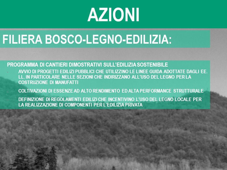 AZIONI FILIERA BOSCO-LEGNO-EDILIZIA: