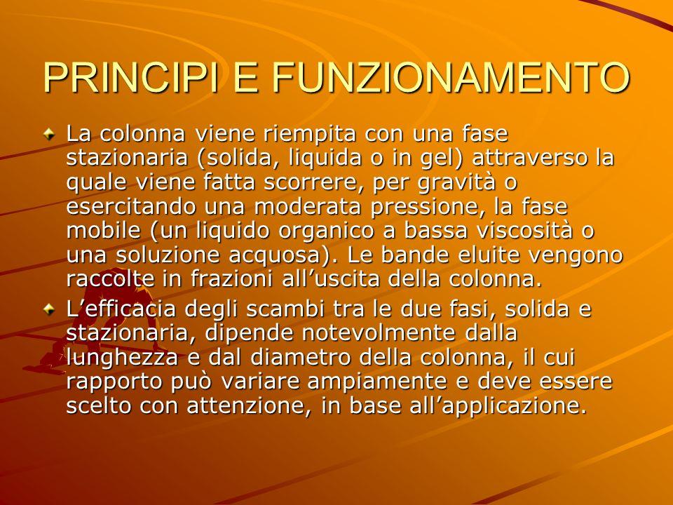 PRINCIPI E FUNZIONAMENTO