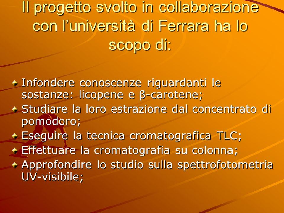 Il progetto svolto in collaborazione con l'università di Ferrara ha lo scopo di: