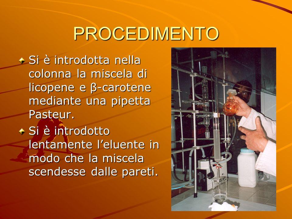 PROCEDIMENTO Si è introdotta nella colonna la miscela di licopene e β-carotene mediante una pipetta Pasteur.