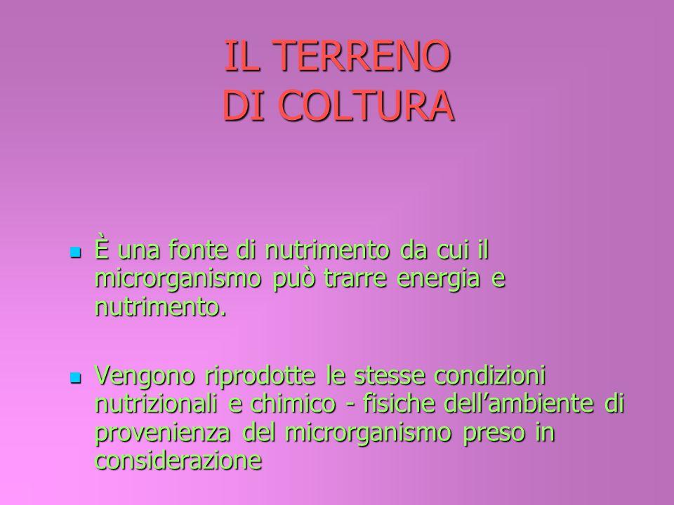 IL TERRENO DI COLTURAÈ una fonte di nutrimento da cui il microrganismo può trarre energia e nutrimento.
