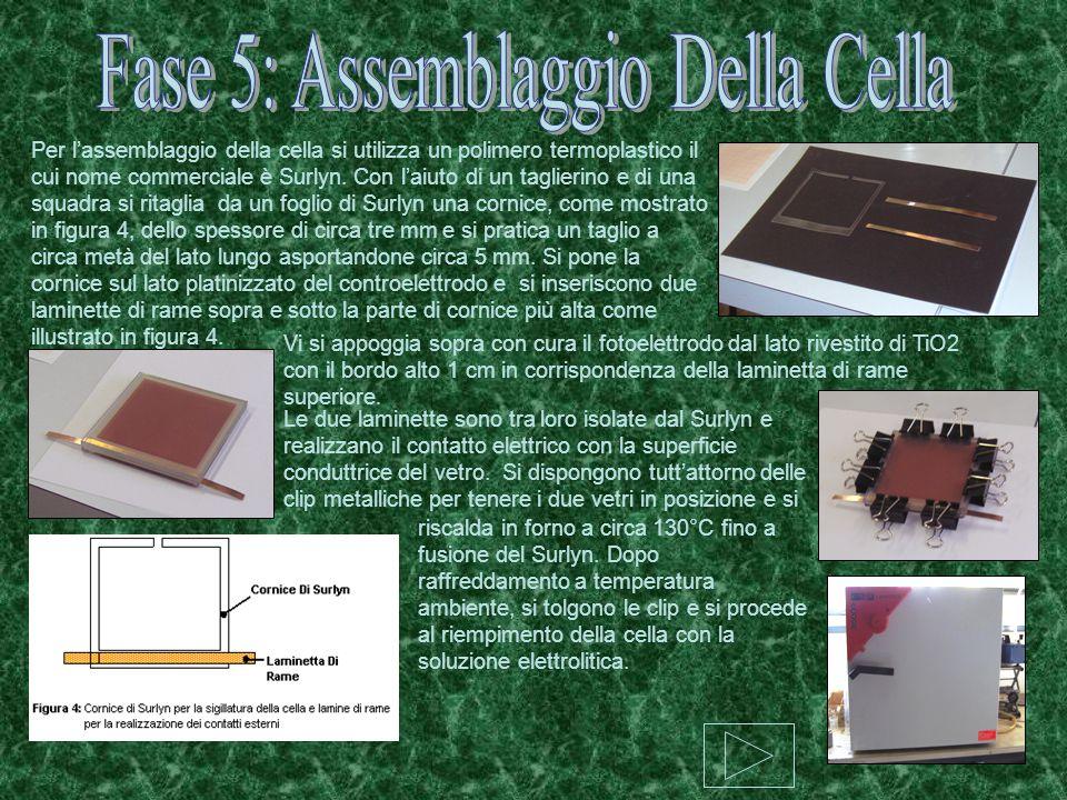 Fase 5: Assemblaggio Della Cella