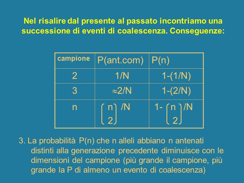 P(ant.com) P(n) 2 1/N 1-(1/N) 3 2/N 1-(2/N) n n /N 1- n /N