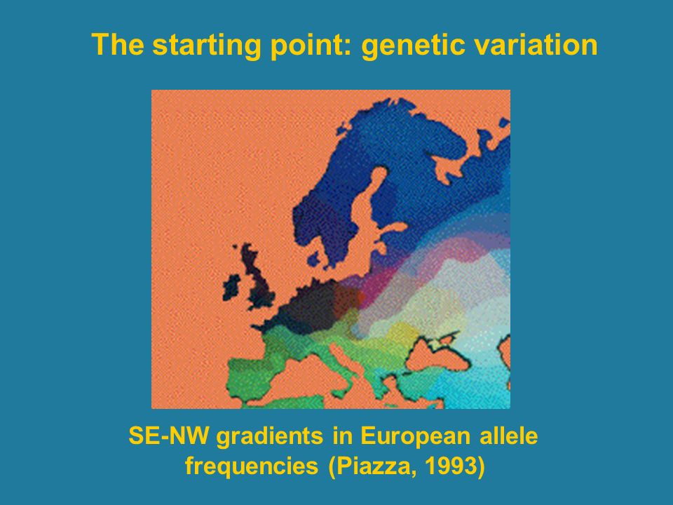 SE-NW gradients in European allele frequencies (Piazza, 1993)