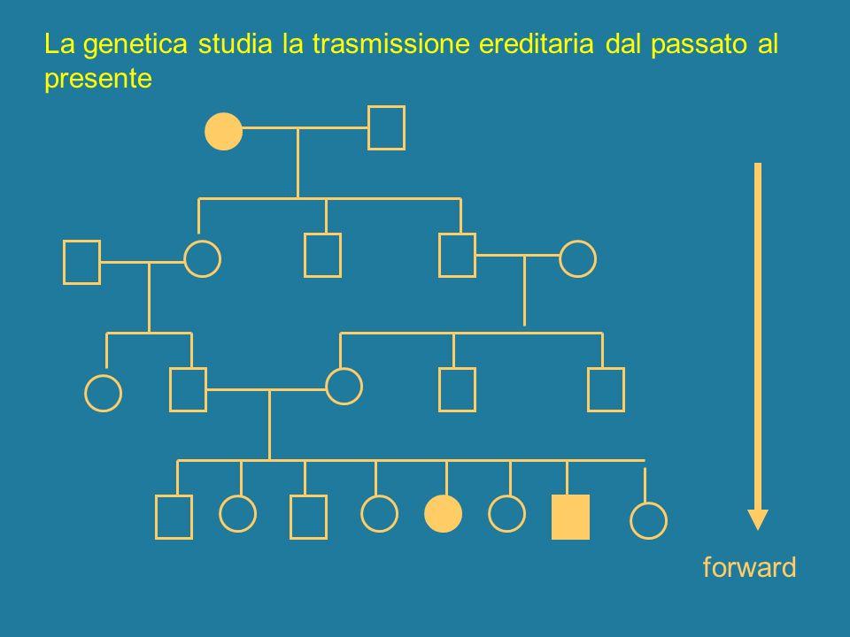 La genetica studia la trasmissione ereditaria dal passato al presente