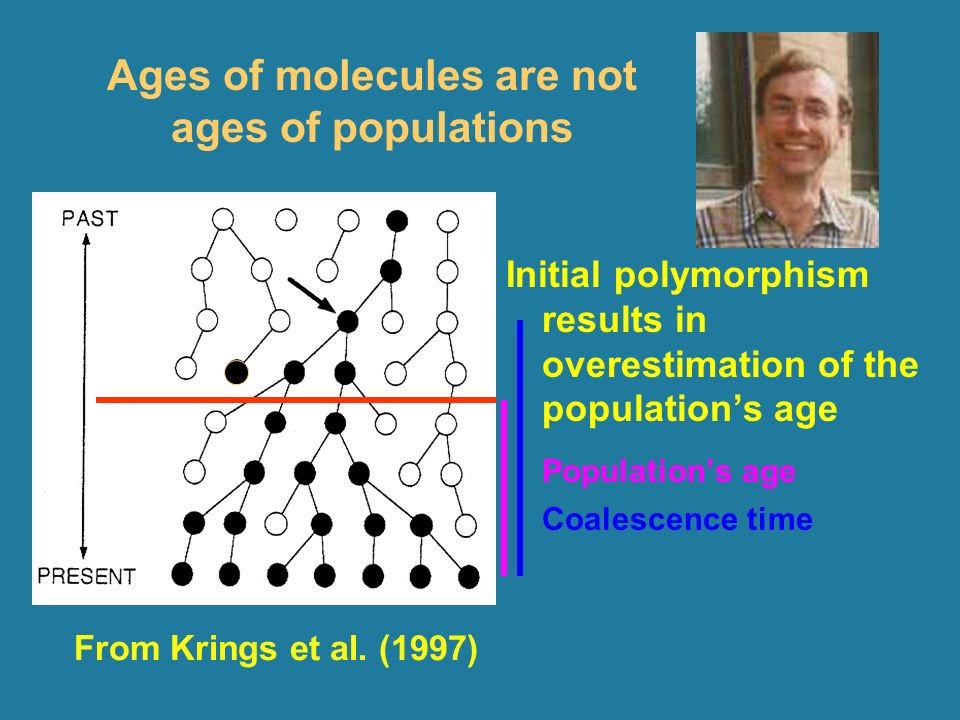 Ages of molecules are not ages of populations