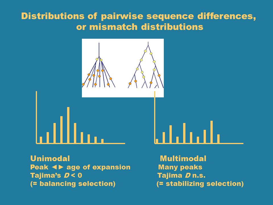 Distributions of pairwise sequence differences,